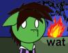 twishine Avatar