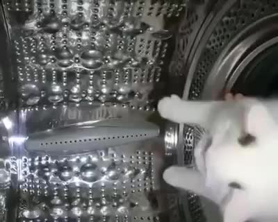 Help, got stuck in the washer. Btw song name?.. My aunt's cat crawled into the washer and went to sleep in it and she didn't know and he ended up dying and now everytime I see a washer and a cat close to each