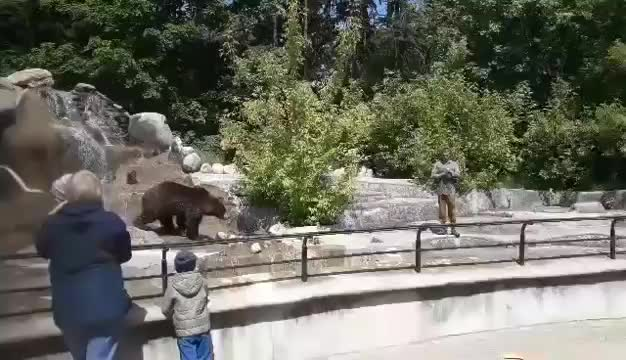 Polish man wrestles a bear... and lives to tell the tale. .. bruhhhhh he made that bear look like a little bitch lol