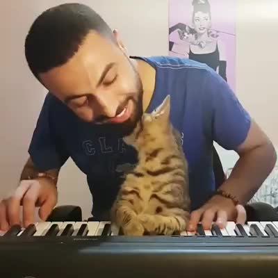 Aww! He Loves Piano. join list: CuteKitty (401 subs)Mention History.. OK, I want to be as loved as much as this guy's kitty loves him.