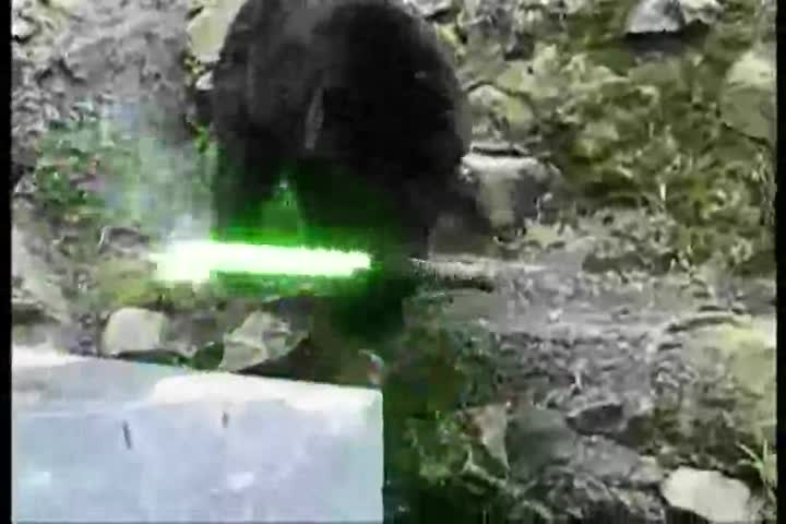 Ninja Bear Finds A Light Saber. Be Careful what you leave laying around.....Visit .. the lightsaber doesn't seem to be very deadly...