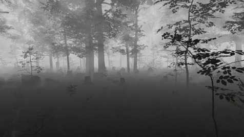Gaming Project I am Working on. Hi FJ, started work on a new horror game. It has had much development time yet, but thought I'd give all'yall a snapshot.. should go play darkwood then develop this more.
