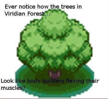 1 New Comment. . Ever notice how the trees in Viridian Fare '