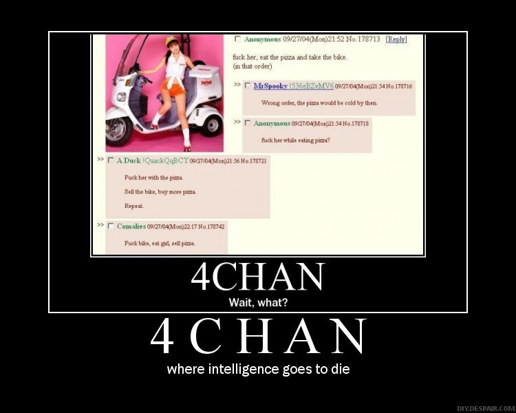 4Chan. .. Not really. There are very intelligent people on 4CHAN. A lot of what you see from there is pretty clever.