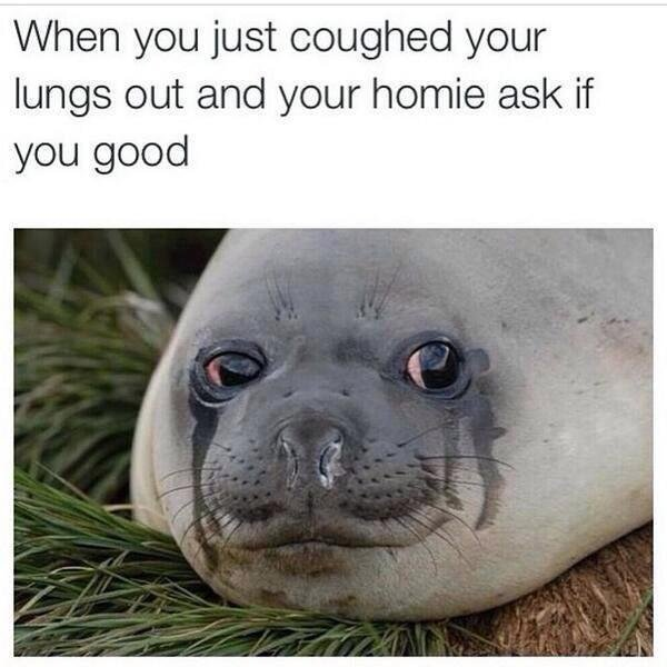 Accurate. So very accurate.. . When you just coughed your lungs out Fred. your home ask if aall,' good