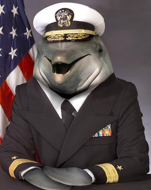 Admiral Dolphin. calling in a full strike package on BP headquarters.. LOOK OUT BP