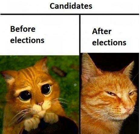 All Candidates Are Gingers. found on blogroll.
