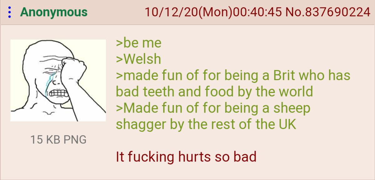 Anon is Welsh. .. They don't even speak a coherent language, they just screech at each other and whatever the other person understands they go with.