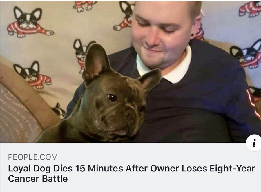 At least he didn't have to suffer loneliness for long. .. Just imagining the loyal dog sprinting to the gates behind the owner. Good boy. Hope they're buried together.