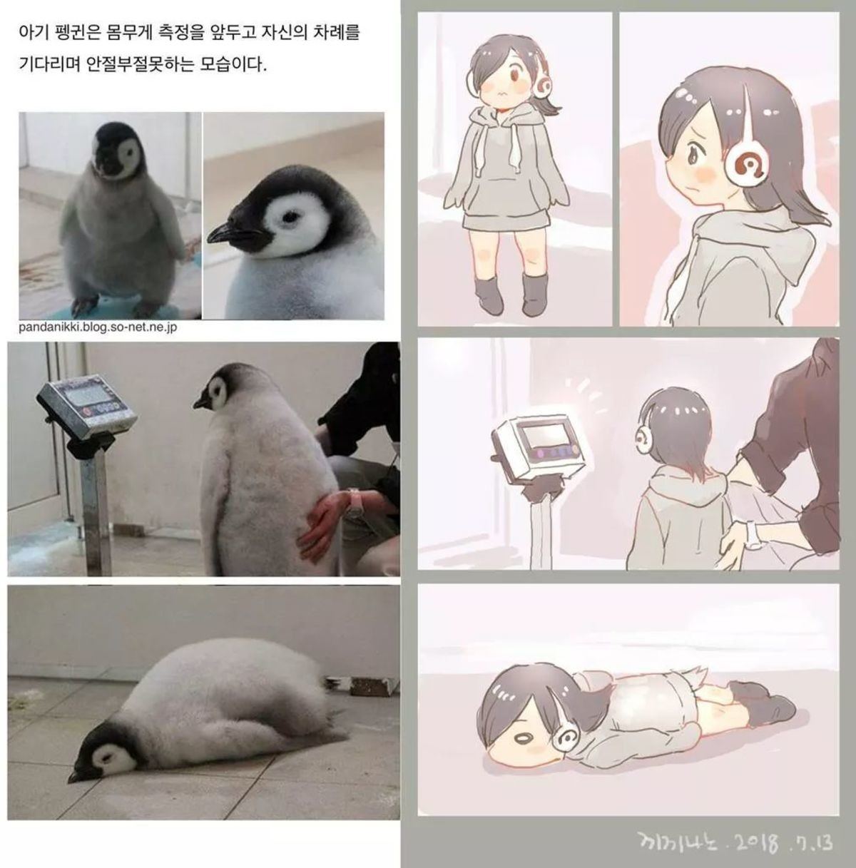 Baby Pengu. join list: MonMusuManiacs (1574 subs)Mention History join list:. i can't it hurts too much