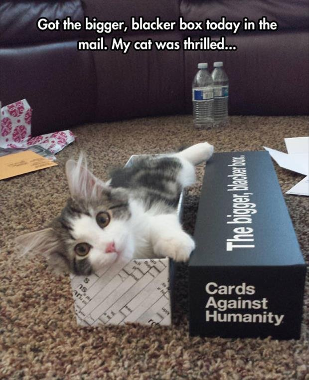 BBC. Source: dumpaday subscvribe for more. Got the bigger, blacker box today in the mail. My cat was thrilled... Against 1 j. Humanity