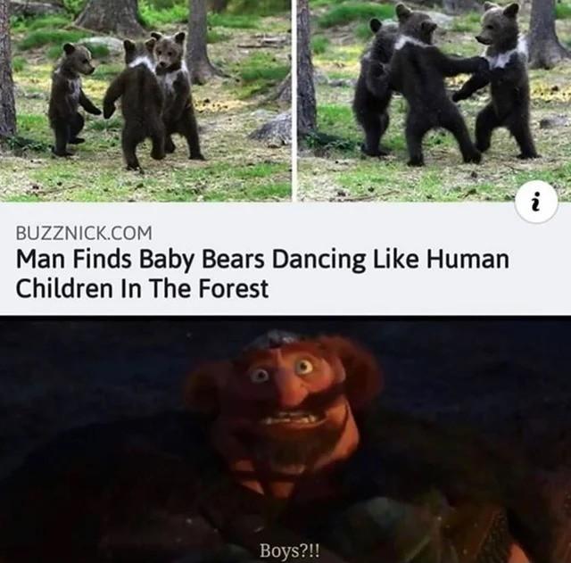 bears. .. Damn Druids