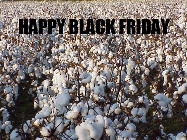 Black Friday. By: BloodyDisgrace Leave Comments.