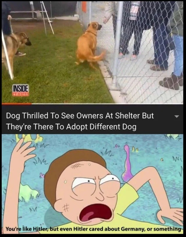 . .. Two sides to every story. The dog was hyper and hostile with its food, especially around the owners kids, which is why they made the decision. The dog was later