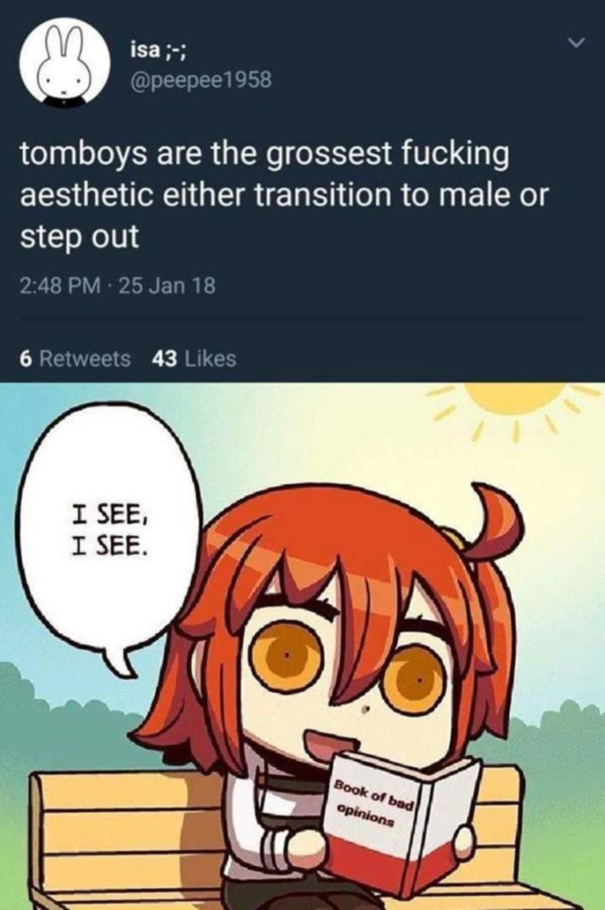 """Book of bad. . tomboys are the grossest fucking aesthetic either transition to male or step out. """"I'm a girl but I like doing things usually done by boys. However I still like being a girl as I'm comfortable with who I am."""" """"Ugh! Just become"""