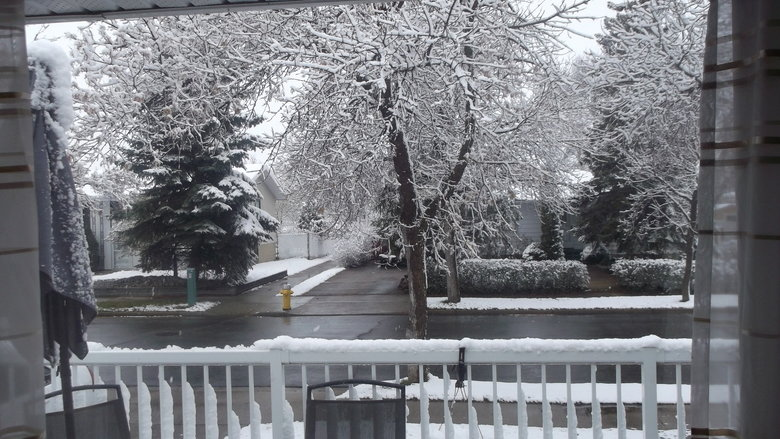 Canadian Summer. Pictures taken on May 5 2015 from my house.... gotta love that summer weather, clear skies, not too cold out.... beach weather to say the least
