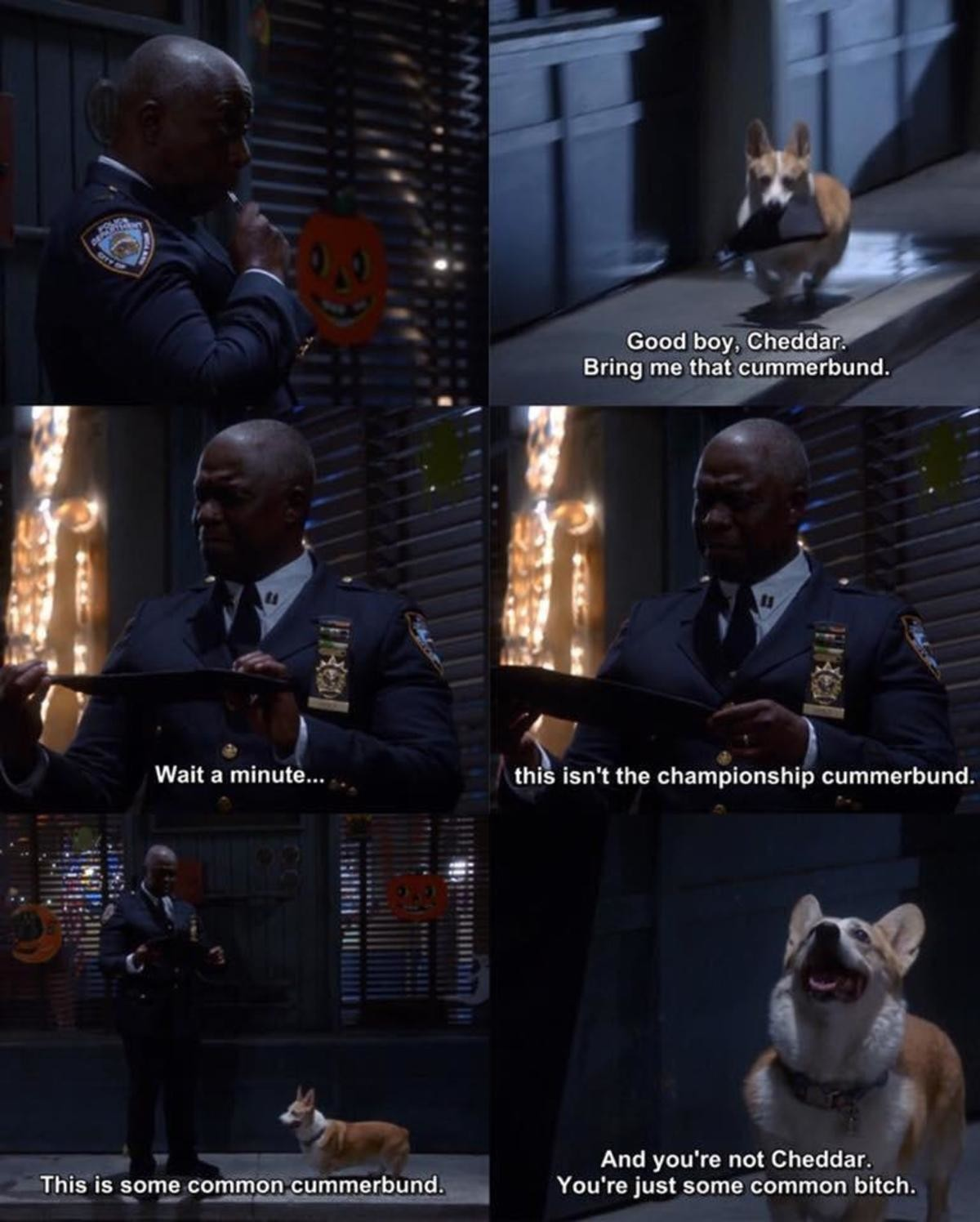 Captain Holt. .. Capt. Holt is an example of writing in good lgbt characters without being all sjw with it.