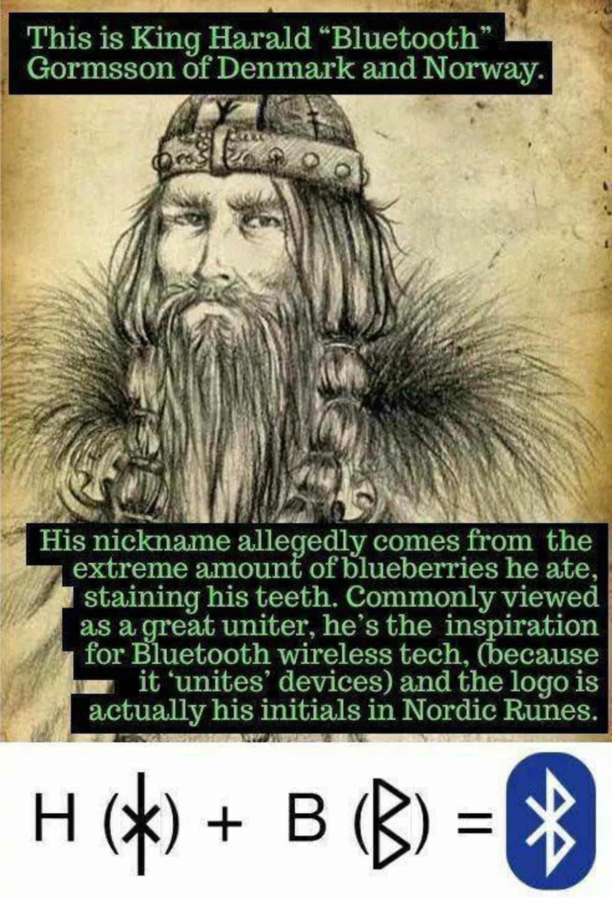 certain evasive Herring. .. Absolute no on the explanation of the blue part of Harald Blåtand. Transliterated from the old Danish written in medieval runes, his name was Haraldr Blá Thandr