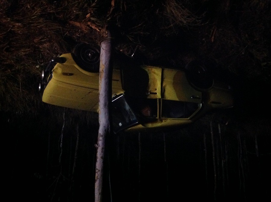 Crashed my car ing rip. Dick head me tried to not hit a kangaroo while it was raining and 360'd off the road sideways into a tree. Somehow the only injuries wer