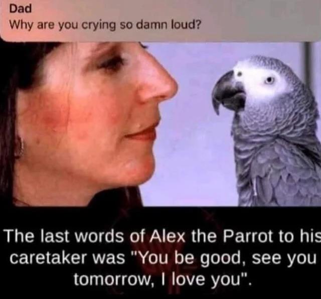 cryin. .. He said that every night tbf.