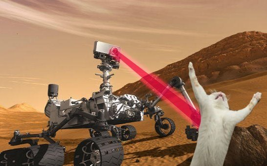 Curiosity killed the cat. source: smosh facebook page.. This is hilarious! Love it! Wish I'd thought of it! Clever!