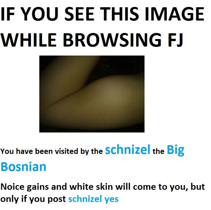 Daily reminder. It's my birthday :^) Post dank memes, yes?. IF YOU SEE THIS IMAGE WHILE BROWSING RI You have been visited by the schnizel the Big Bosnian Noice