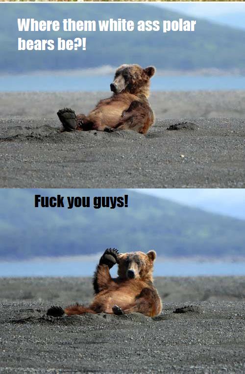 Dam K.K.K Bears. Polar white bears!. nears Ila?! In F