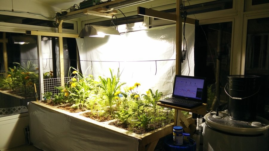 DeadlyFoez Aquaponics MEGA Update. join list: IndoorAquaponics (57 subs)Mention History Previous Posts: Hey everyone. A huge update here. I have been doing a lo