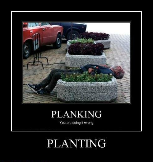 Demotivational. It's the new planking!. PLANTING. He's fertilizing. Not planting.