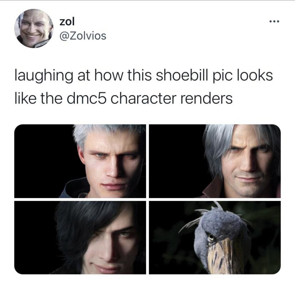 Devil May Cry 6 protagonist leak. .. Somewhat related, but if you haven't heard a Shoebill make its sound, you should check it out: