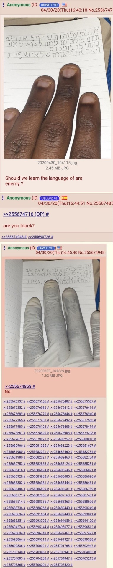 doctrinal salty Cassowary. .. i love it when black people on 4chan do like this