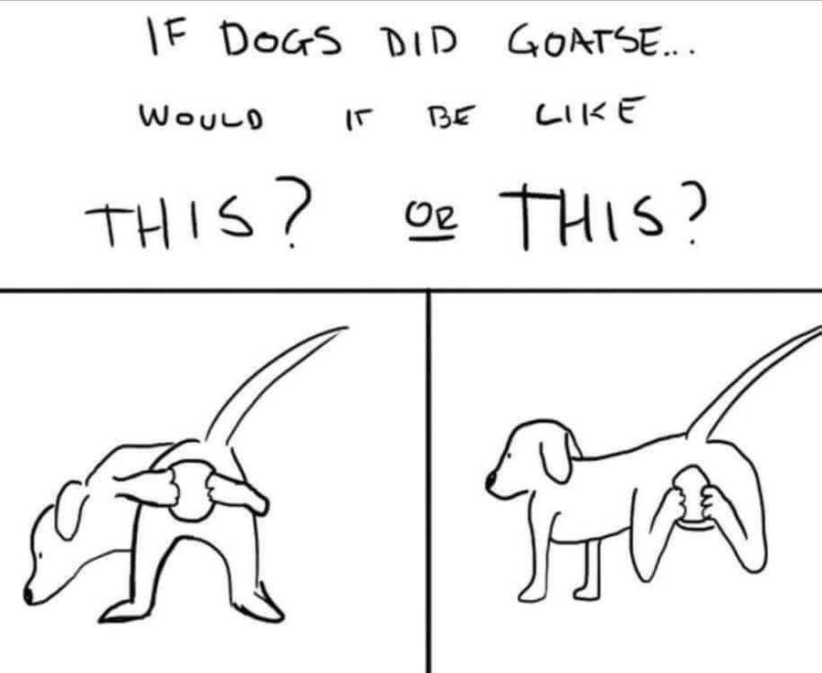 Dog Goatse. What do you think how the dogs would do it?.