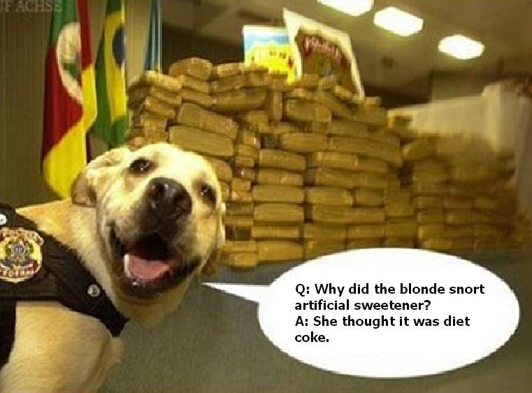 Drug Jokes with Drug Sniffing Dog. thumbs if you lold, or not.... Q: Why did the Mantle snort artificial sweetener? She thought it was diet ecke.. :D