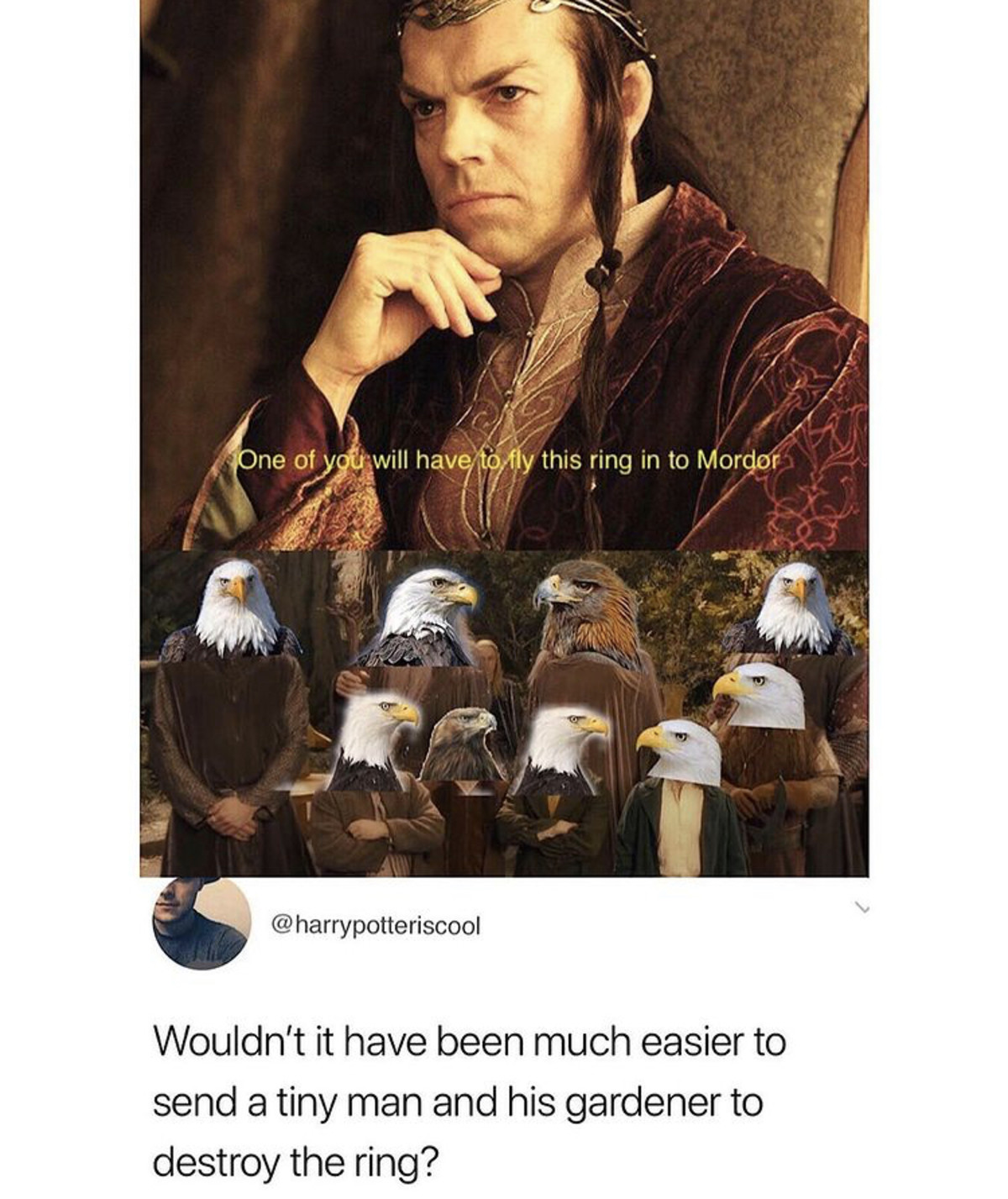 entangled Pelican. .. It's always the same question, it's always the same answer: Sauron would have obliterated the eagles from his smalldick-compensation tower, he almost does that