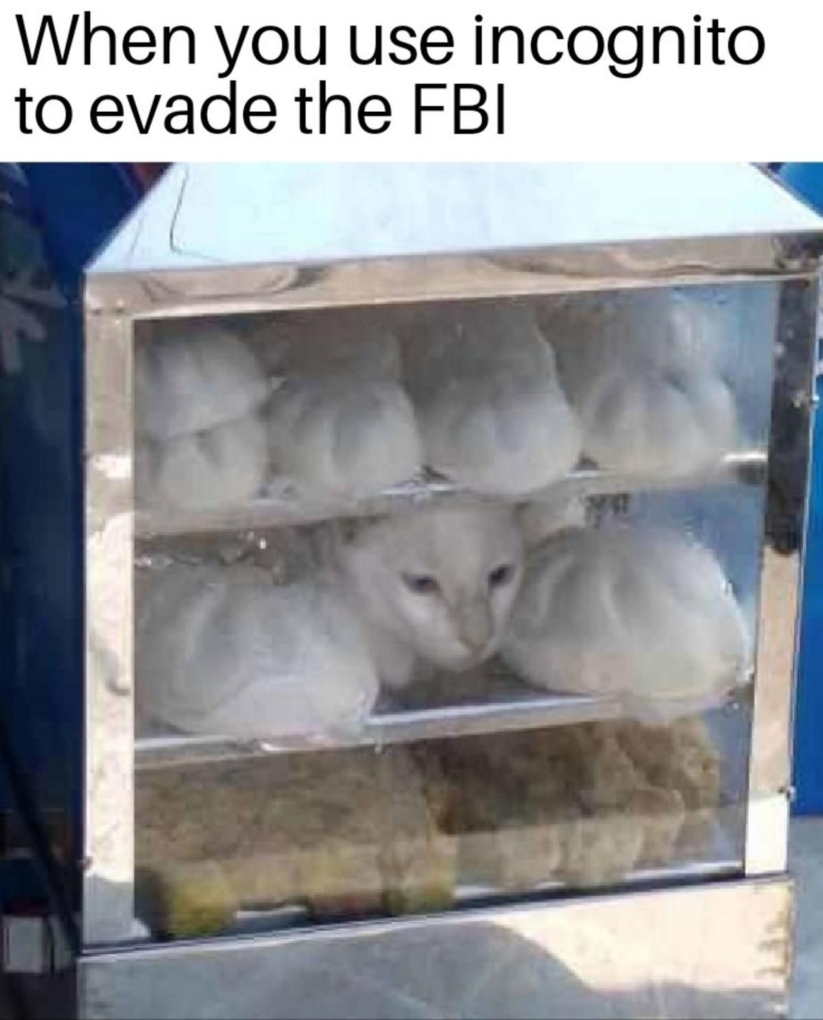 evade. .