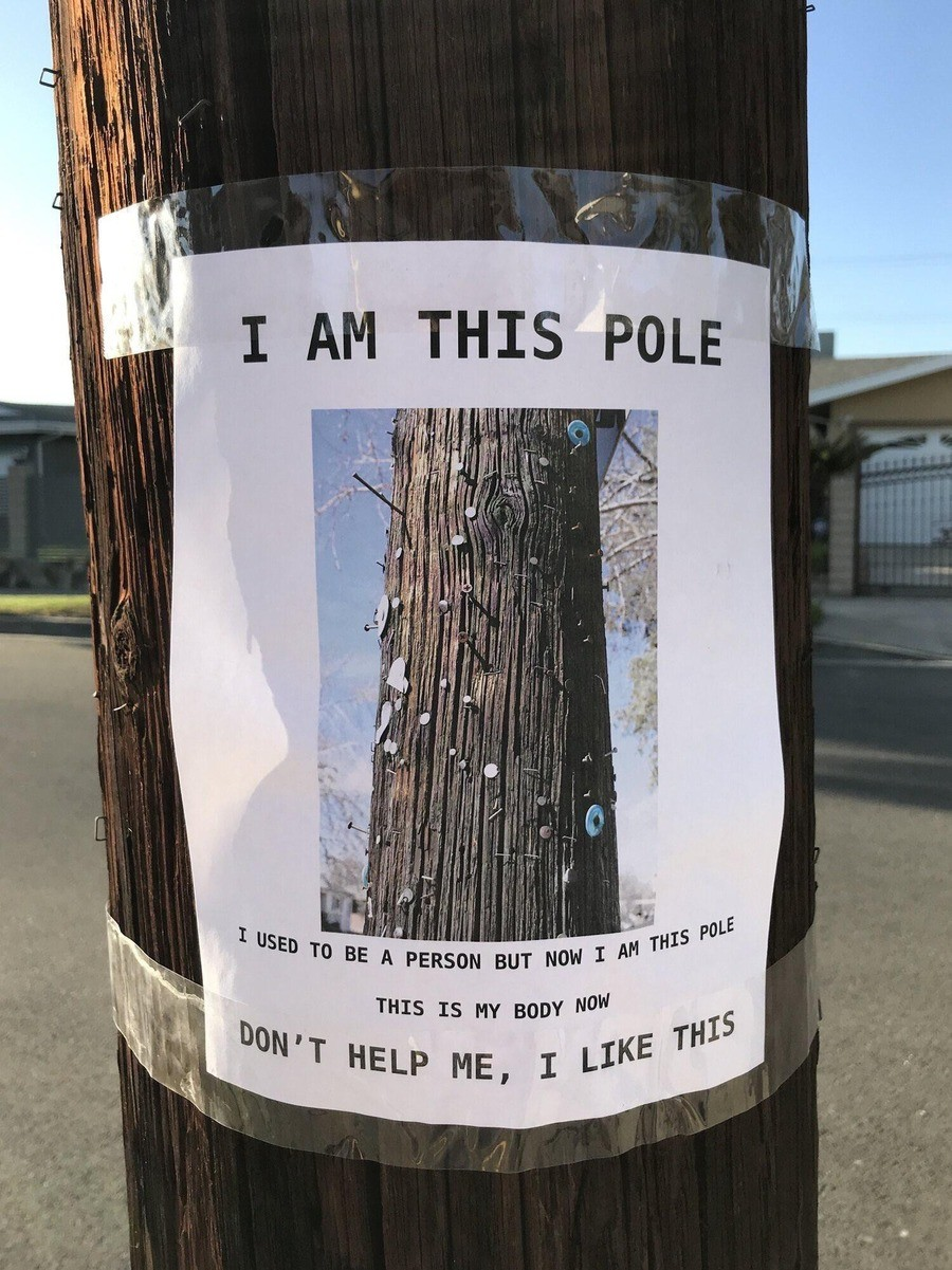 evanescent sleepy Llama. .. Funny thing, I am a Pole too. I also used to be a person. But now I'm just a Pole. Please help me, I definitely don't like this. Comment edited at .