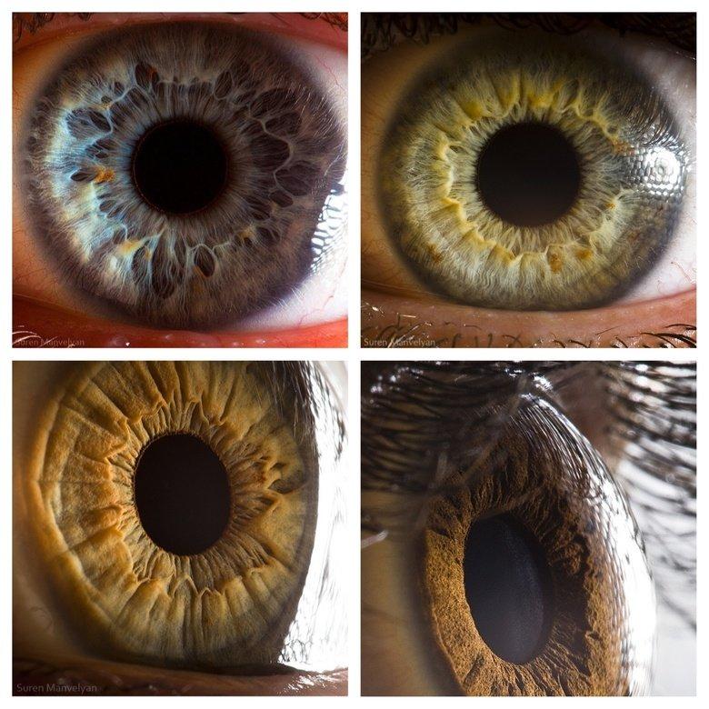 Eyes. .. a