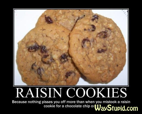 Fckin raisin. i throw it on the ground. RAISIN COOKIES Because , pisses you off more than when you a raisin cookie for a chocolate chip 1: com. I feel like I've heard this somewhere, but I don't think it was on funnyjunk, so 1 thumb for you!