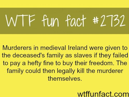 Fact. . Murderers in medieval Ireland were given to the deceased' s family as slaves if they failed to pay a hefty fine to buy their freedom. The family could t