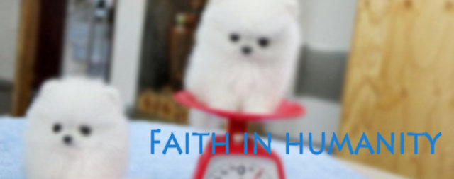 Faith in humanity comp. Hey FJ, you've felt a little down lately, so I went into the interwebs and got you some faith in humanity. I hope you enjoy... I'm not sure if it's because of my current situation or if this is actually as beautiful as it seems, but this moved me to tears.