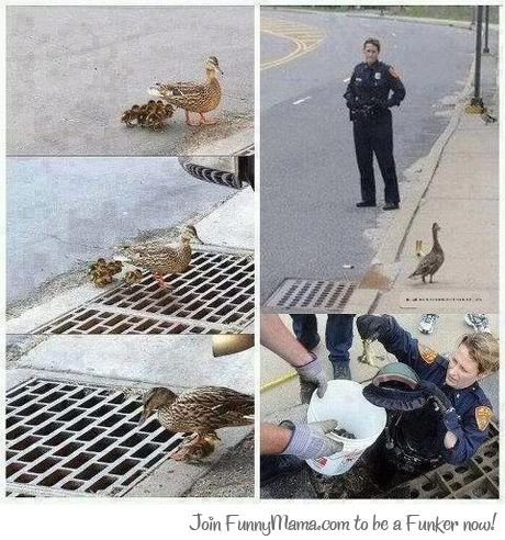 faith in humanity restored. not mine. aw fl Join to he a Butim mm!