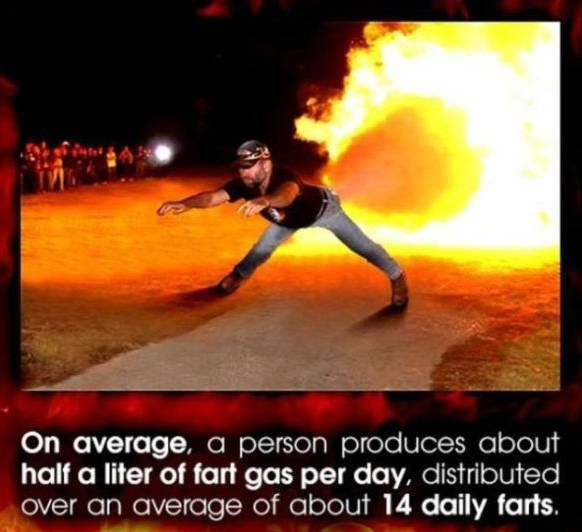 Fart comp. An average fart is made of: 59% nitrogen 21% hydrogen 9% carbon dioxide 7% methane 4% oxygen 1% hydrogen sulfide, the smelly part 100% original fart