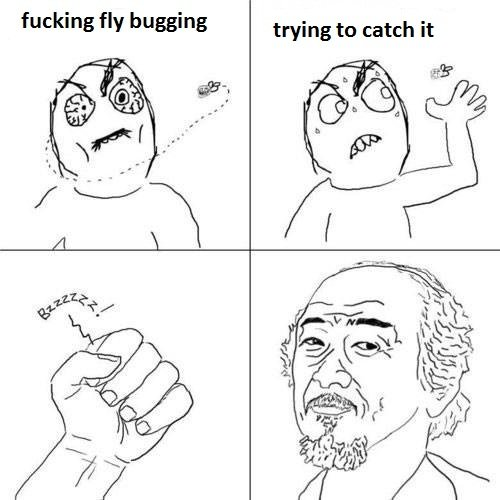 Feel like an asian. Nothing to do here. fucking fly bugging trying to catch it. Oh god please don't make Mr. Miyagi another one of those annoying overused rage faces.