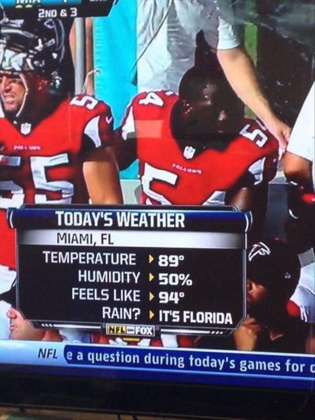 Florida 2. Source: dumpaday. TEMPERATURE ' BB'' HUMIDITY , 50% FEELS LIKE F M''