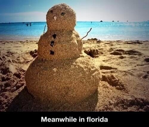 Florida be like. . Meanwhile in florida. This is the 10 forecast for where I live.
