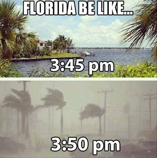Florida be like. . III Catt, .. I can confirm this.