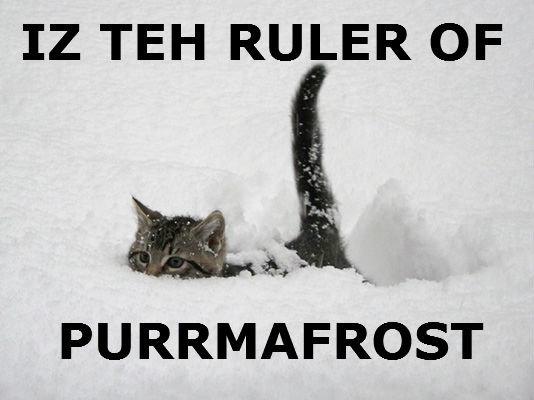 Freezing . 1 2 3 4 5. TEH RULER OF