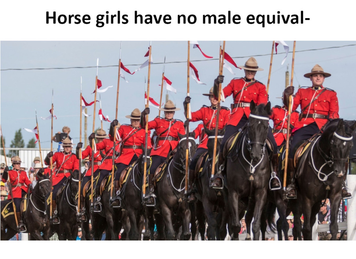 God Damnit, Canada!. .. our government probably wastes huge amounts of money maintaining the rcmp's heritage but when you look at the cliche image of a cop in europe and see 6 plugs in