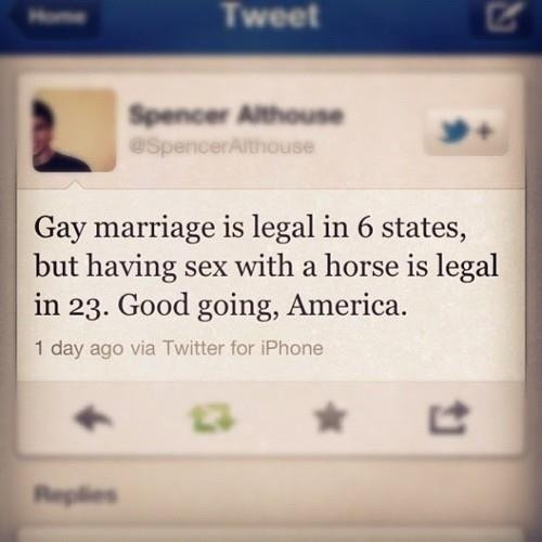 Good Going. . Gay marriage is legal in 6 states, but having sex with a horse is legal in 23. Good going, America.. And this is where bronies come in...