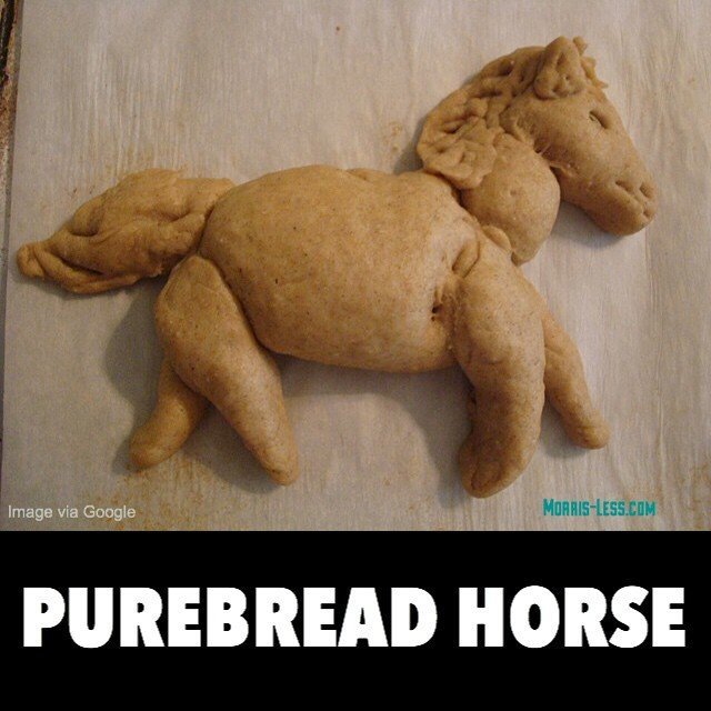 Great for a Filly cheesesteak!. Well, at yeast I tried... This pun was so bad, that I almost crumbled